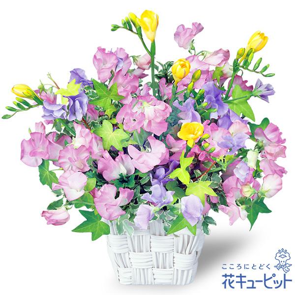 【春のお誕生日】スイートピーのスクエアバスケット春の花たちを伸びやかに生けました