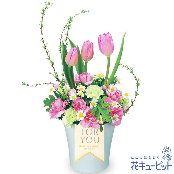 【誕生花 2月(チューリップ等)(法人)】春のチューリップアレンジメント