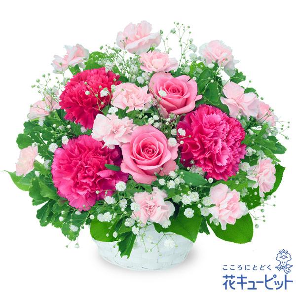 【お祝い】ピンクバラのアレンジメント様々なシーンに適したピンク色のアレンジメント