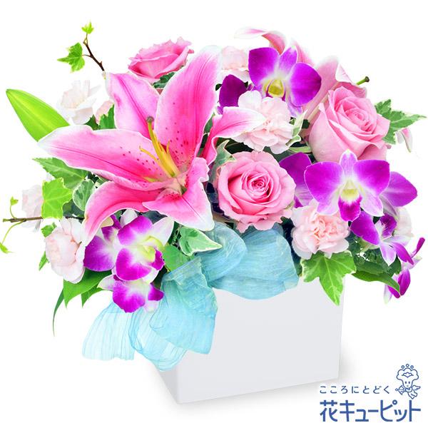 【お祝い】ピンクユリのキューブアレンジメントピンク系のゴージャスなアレンジメント