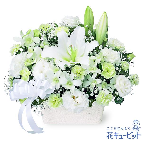 【お供え・お悔やみの献花】お供えのアレンジメント真っ白なリボンが故人への想いを繋ぎます