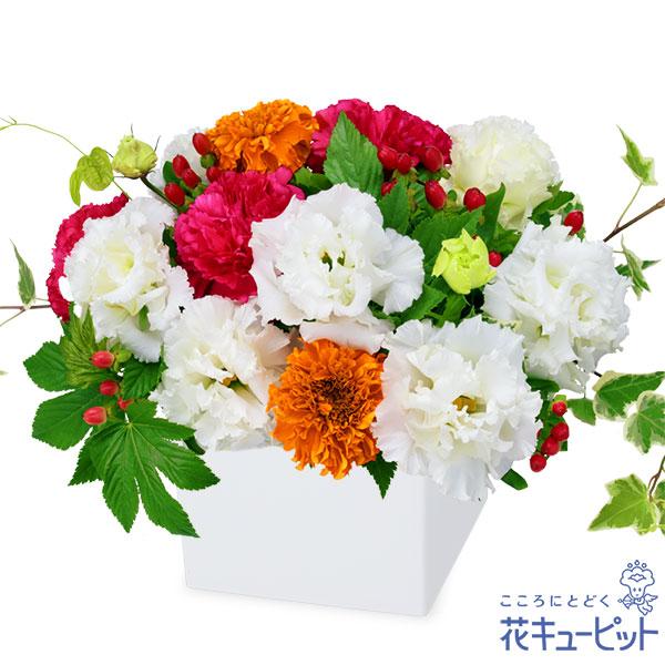【お誕生日祝い(法人)】トルコキキョウのキューブアレンジメント