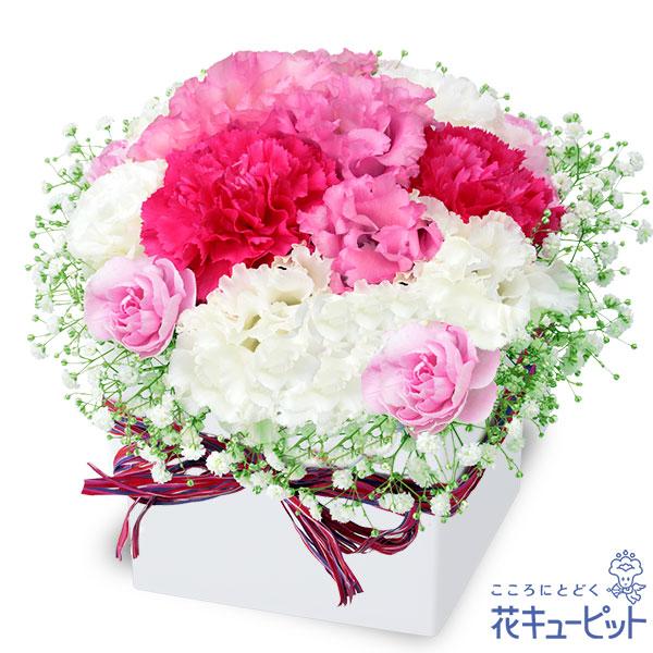 【ご結婚記念日(法人)】トルコキキョウのロマンチックキューブ