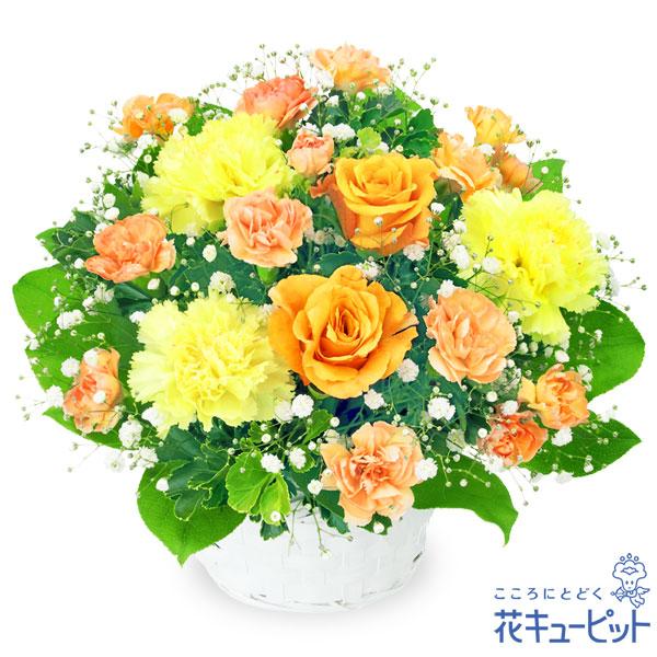 【お祝い】オレンジバラのアレンジメント様々なシーンに適したビタミンカラーのアレンジメント