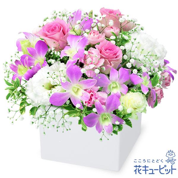 【お祝い】デンファレとバラのキューブアレンジメント上品で可愛らしいアレンジメント