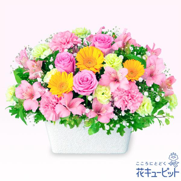 【お祝い】アルストロメリアとガーベラのアレンジメント元気を届けるポップなアレンジメント