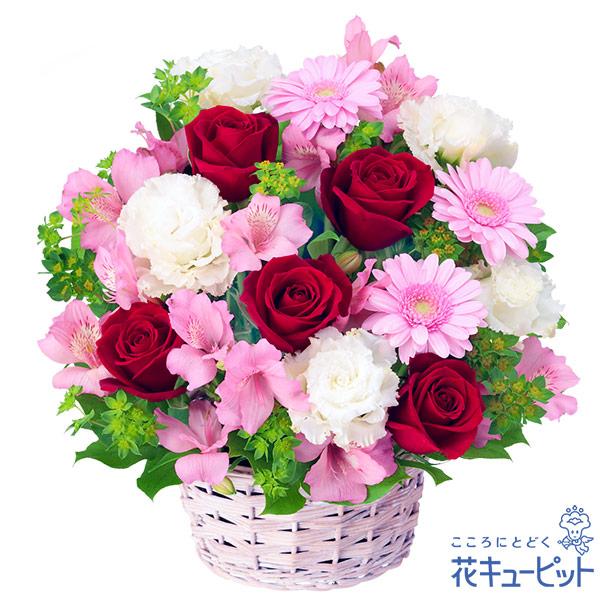 【お祝い】赤バラとアルストロメリアのアレンジメント赤バラが印象的なアレンジメント