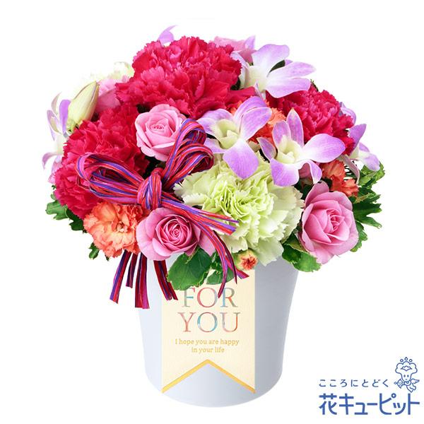 【誕生花 9月(デンファレ等)(法人)】デンファレの鮮やかアレンジメント