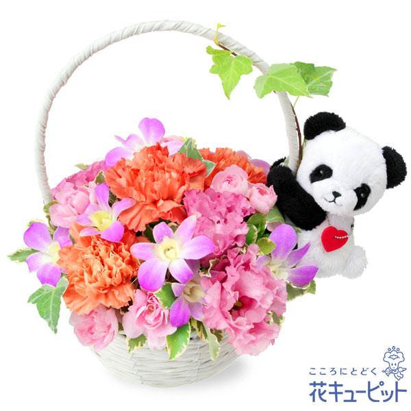 【お祝い】デンファレのマスコット付きバスケット(パンダ)お花畑の中のキュートなパンダアレンジ