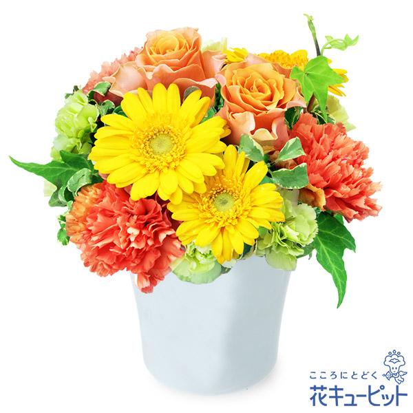 【10月の誕生花(オレンジバラ等)】オレンジバラとガーベラのナチュラルアレンジメントお花の鮮やかさを楽しめる大人可愛いデザイン