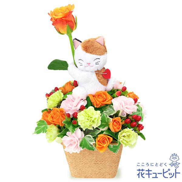 【お祝い】オレンジバラのマスコット付きアレンジメント(三毛猫)三毛猫がオレンジバラをプレゼント