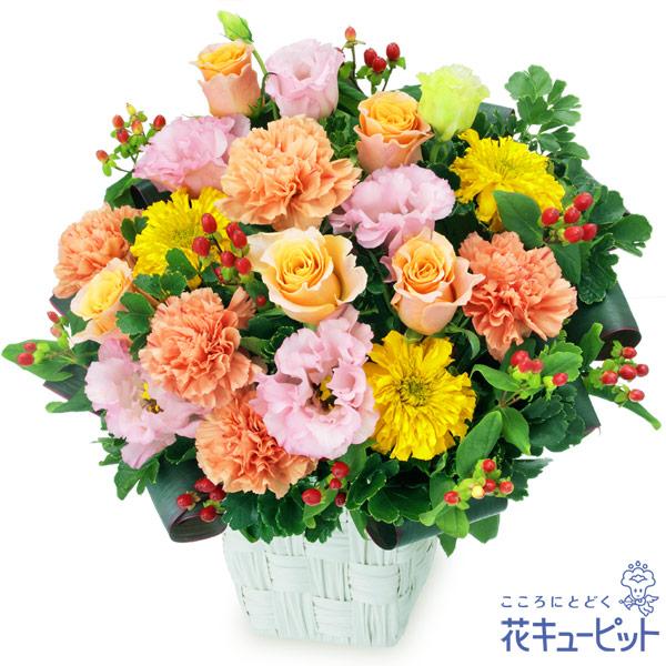 【開店祝い・開業祝い】オレンジバラとトルコキキョウのアレンジメント柔らかな色合いのお花をたっぷり使ったアレンジメント