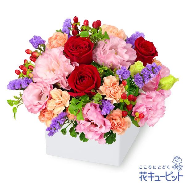 【お祝い】赤バラとトルコキキョウのキューブアレンジメント上品で落ち着きのあるキューブアレンジメント
