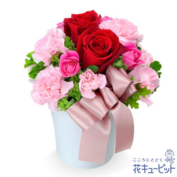 【ペット用フラワーギフト・お祝い】赤バラのナチュラルアレンジメントコンパクトな赤バラアレンジメント