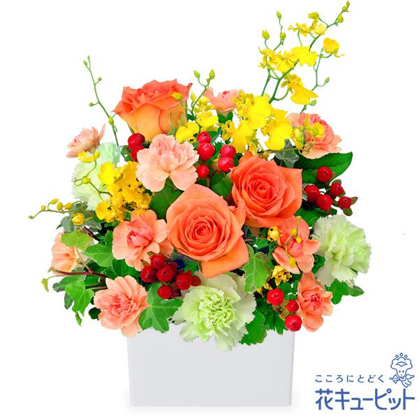 【10月の誕生花(オレンジバラ等)】オレンジバラの華やかアレンジメントカジュアルにもフォーマルにも適したギフト