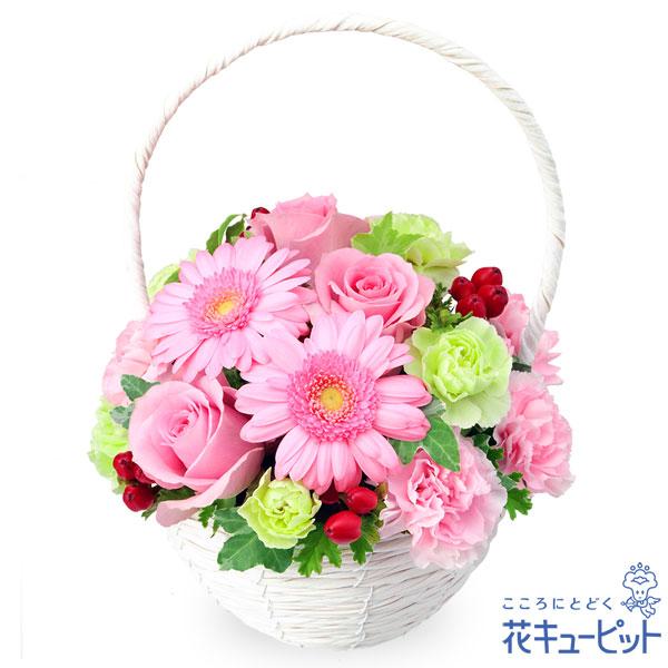 【誕生花 3月(ピンクガーベラ等)(法人)】ピンクバラとガーベラのナチュラルバスケット