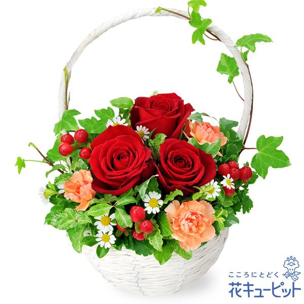 【ご結婚記念日(法人)】赤バラのナチュラルバスケット