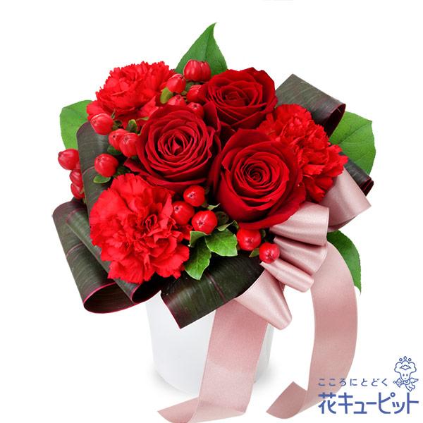 【お祝い】赤バラのエレガントアレンジメント上品な赤いバラが大人な雰囲気を感じさせるアレンジメント
