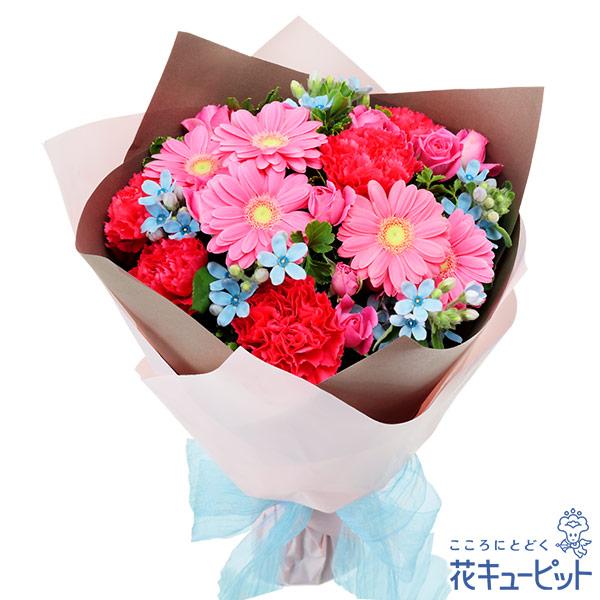 【誕生花 3月(ピンクガーベラ等)(法人)】ピンクとブルーの鮮やかブーケ