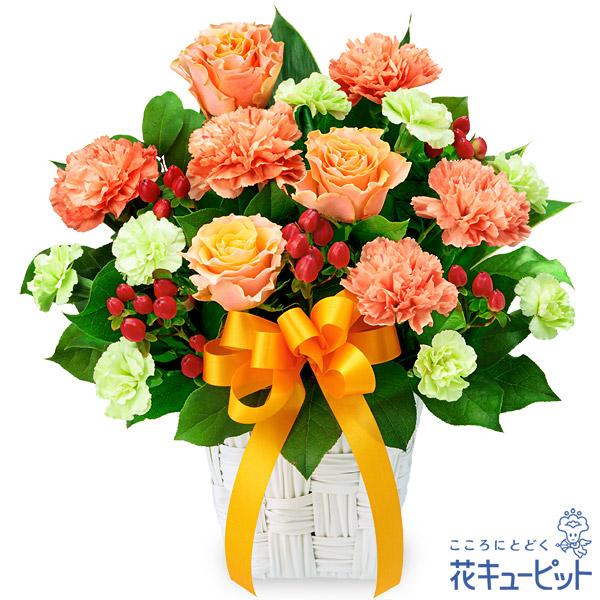 【お祝い】バラとオレンジリボンのアレンジメントあたたかく親しみのあるオレンジでまとめたアレンジメント