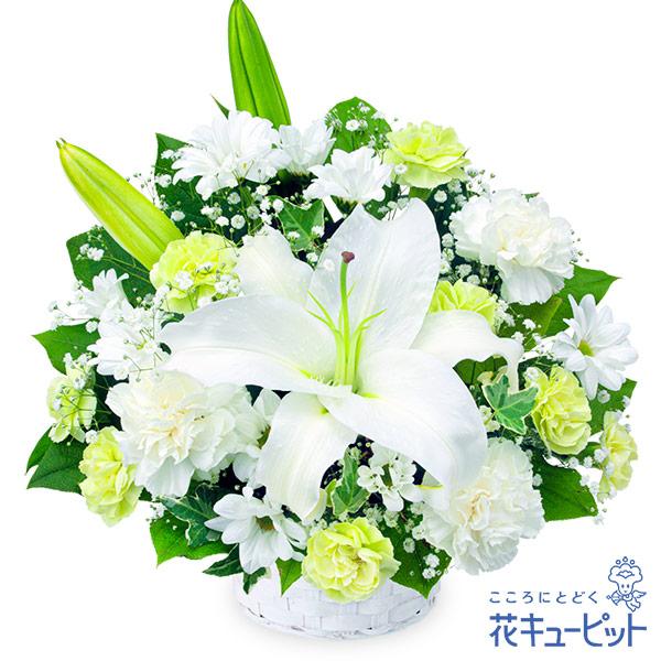 【お供え・お悔やみの献花】お供えのアレンジメント故人との思い出にやさしく寄り添います