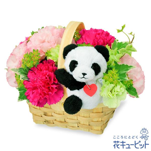 【誕生日フラワーギフト】トルコキキョウのマスコット付きウッドバスケットパンダのマスコットが付いたお花たっぷりバスケット