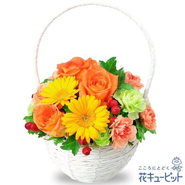 【11月の誕生花(ガーベラ等)】オレンジバラとガーベラのナチュラルバスケット飾り気のない可愛さと、優しさを感じるアレンジメントです