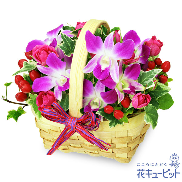 【ペット用フラワーギフト・お祝い】デンファレのウッドバスケットくっきりとした鮮やかな色合いの花々