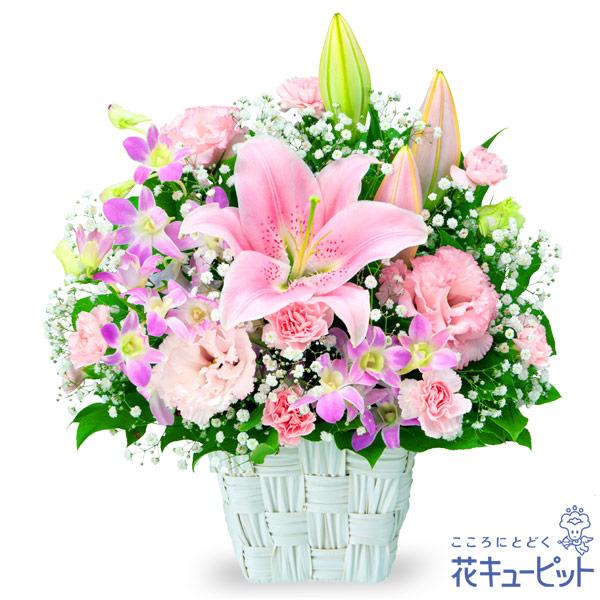 【お誕生日祝い(法人)】ユリとデンファレのキュートアレンジメント