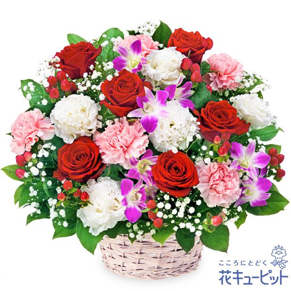 【お祝い】赤バラとデンファレのアレンジメント華やかながら上品な雰囲気に仕上げました