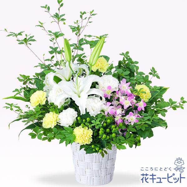 【開店祝い・開業祝い(法人)】白ユリとデンファレのアレンジメント