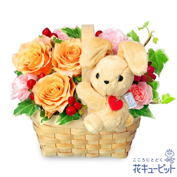 【誕生日フラワーギフト】オレンジバラのマスコット付きウッドバスケットオレンジバラにたれみみうさぎを添えて