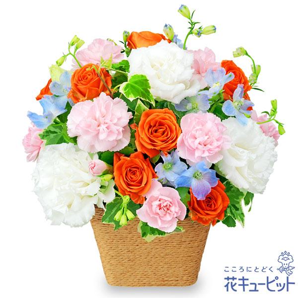 【誕生日フラワーギフト・バラ】ホワイト&オレンジのアレンジメント優しげでふんわりとしたフォルム