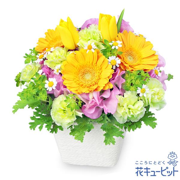【チューリップ特集】春のガーデンアレンジメント(イエロー)チョウチョが遊びにやってきそうなデザイン