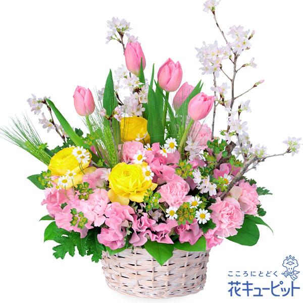 【お祝い】桜のミックスアレンジメント春を代表するたくさんのお花が笑顔をお届けします