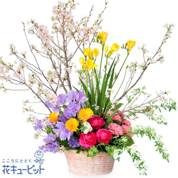 【お祝い】桜の豪華なアレンジメント鮮やかな花々が笑顔にしてくれます