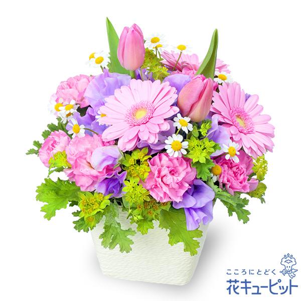 【お祝い】春のガーデンアレンジメント(ピンク)大切な方に春の訪れをプレゼント
