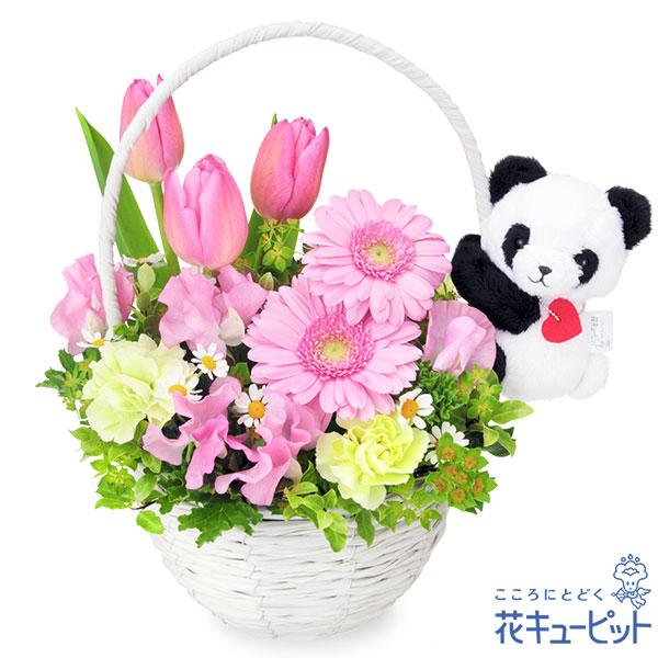 【誕生花 2月(チューリップ等)(法人)】チューリップのマスコット付きバスケット(パンダ)