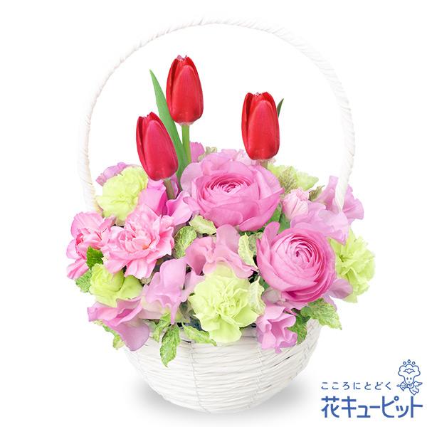 【お祝い】赤チューリップのナチュラルバスケット鮮やかな色味の花々が心を明るくしてくれます