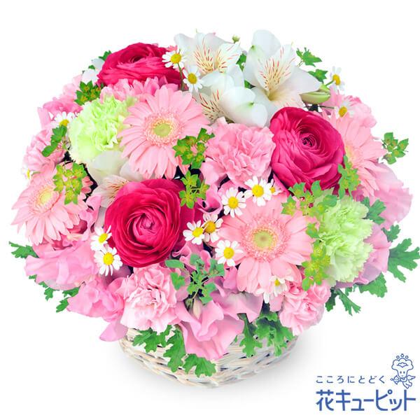 【春のお誕生日】春の花のピンクアレンジメントお花をふんだんに使った春にぴったりのアレンジメント