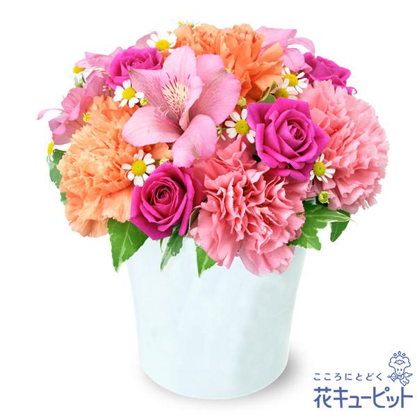 【誕生花 4月(アルストロメリア)(法人)】アルストロメリアのピンクアレンジメント