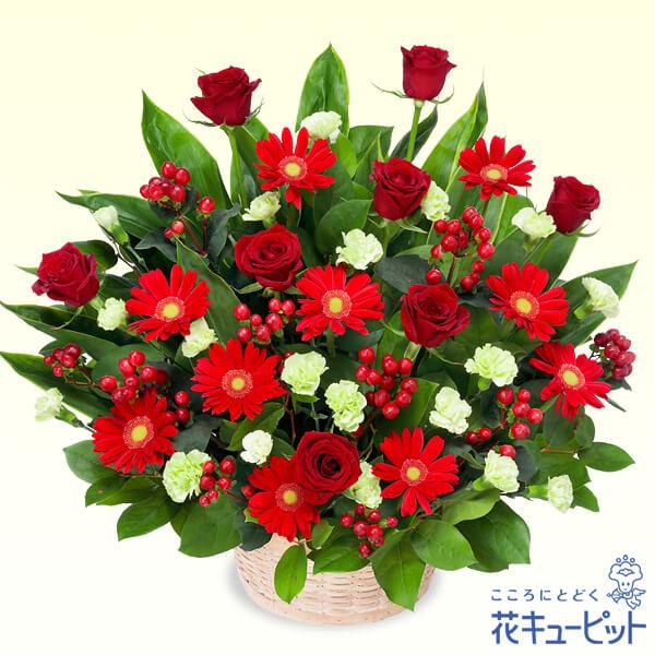 【ご昇進・ご栄転(法人)】赤バラと赤ガーベラの豪華なアレンジメント