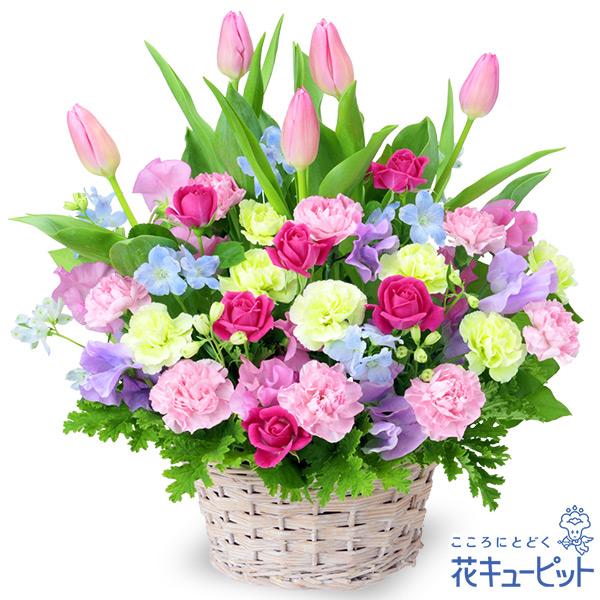 【2月の誕生花(チューリップ等)】チューリップのミックスアレンジメント素敵な花言葉を持ったお花をたっぷりと