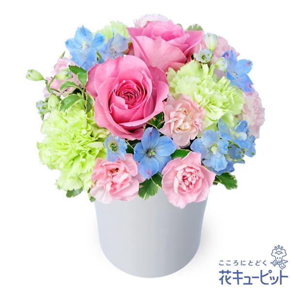 【誕生花 5月(ピンクバラ)(法人)】ピンクバラのパステルアレンジメント