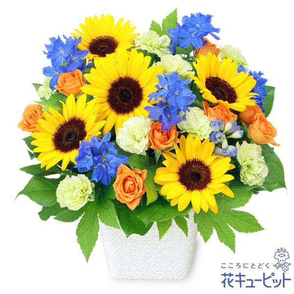 【父の日 ランキング】お父さんありがとうアレンジメントお父さんにぴったりな花々が盛りだくさん