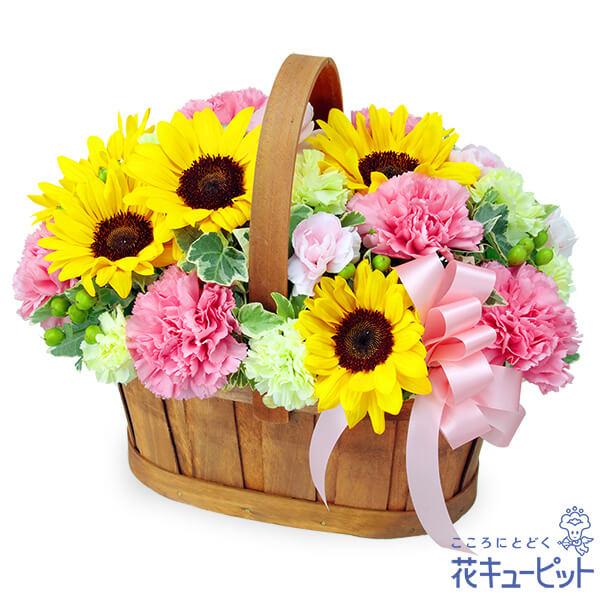 【誕生花 7月(ひまわり等)(法人)】ひまわりのハーモニーバスケット(ピンク)