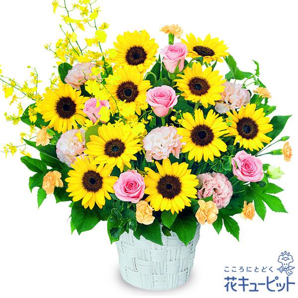【誕生花 7月(ひまわり等)(法人)】ひまわりの華やかアレンジメント(ピンク)