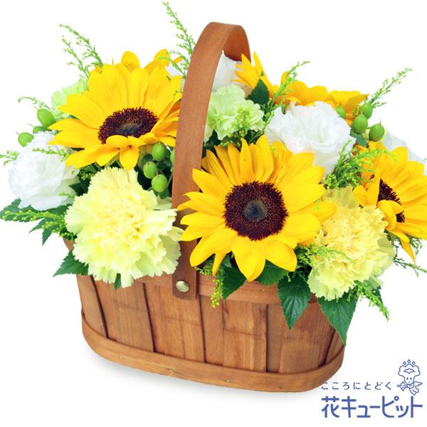 【七夕】ひまわりのハーモニーバスケット自然の美しさを感じるナチュラルなデザイン