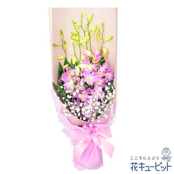 【誕生花 9月(デンファレ等)(法人)】デンファレの花束