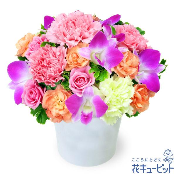 【9月の誕生花(デンファレ)】ピンク&オレンジのアレンジメント落ち着いた色合いのエレガントな花々が魅力